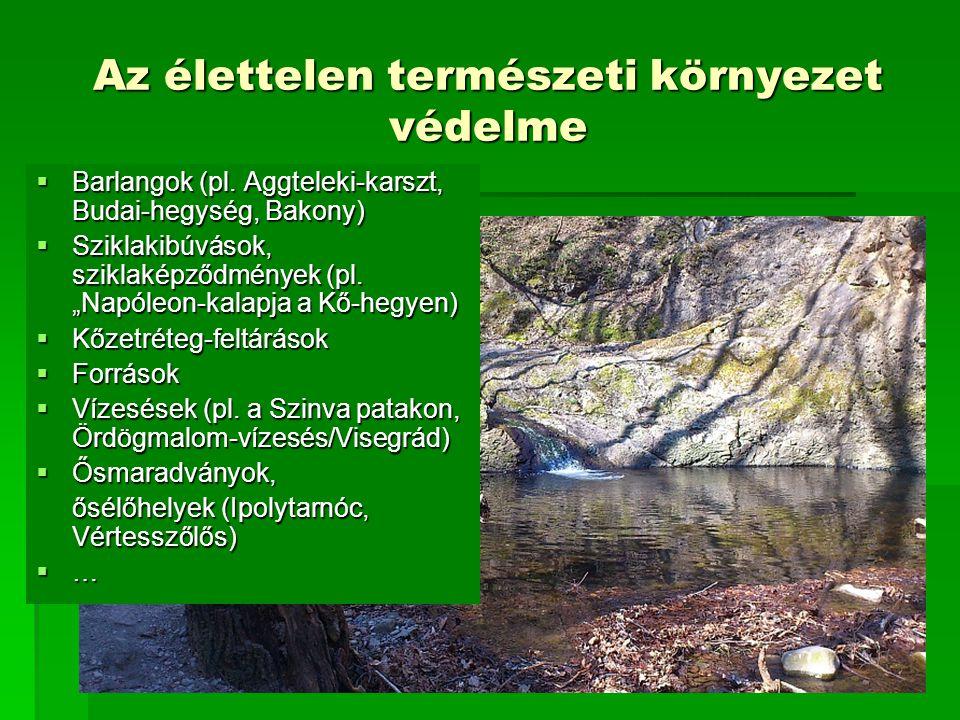 """Nemzeti és nemzetközi ökológiai hálózatok 1.: Nemzeti Ökológiai Hálózat Hármas """"szint :  Magterület  Ökológiai folyosó  Pufferterület"""