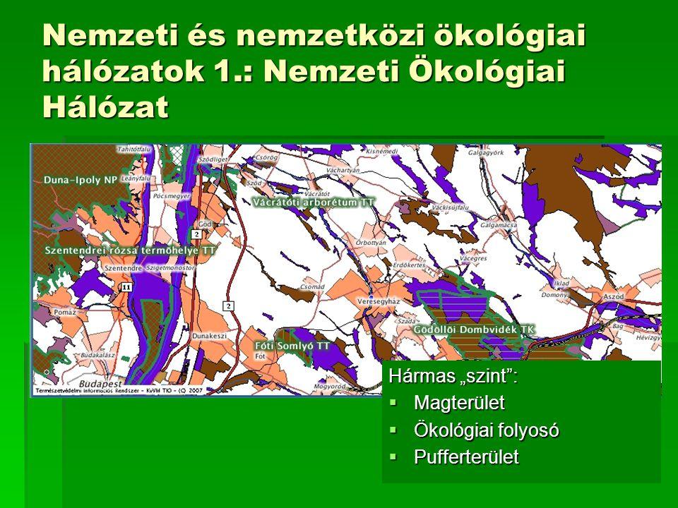  Magyarország területének 20 %-a  Alapjai:  Madárvédelmi direktíva  Élőhelyvédelmi direktíva  Ún.