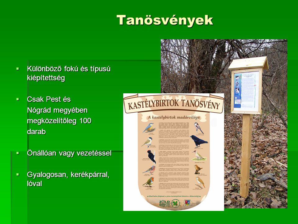 """Ökoszisztéma szolgáltatások  Levegő minőség javítása (""""porfogás , O 2 -termelés, CO 2 -lekötés)  Zajvédelem  Vízminőség javítása  Remediáció  Rekreáció  Kedvező lélektani hatás"""