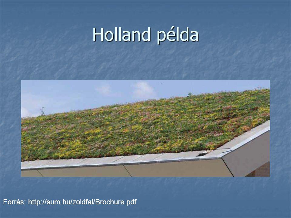 Holland példa Forrás: http://sum.hu/zoldfal/Brochure.pdf