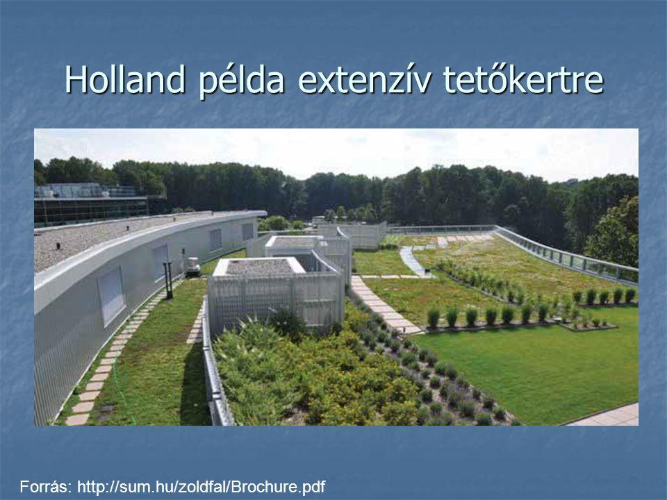 Holland példa extenzív tetőkertre Forrás: http://sum.hu/zoldfal/Brochure.pdf