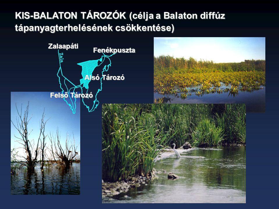 KIS-BALATON TÁROZÓK (célja a Balaton diffúz tápanyagterhelésének csökkentése) Fenékpuszta Zalaapáti Felső Tározó Alsó Tározó
