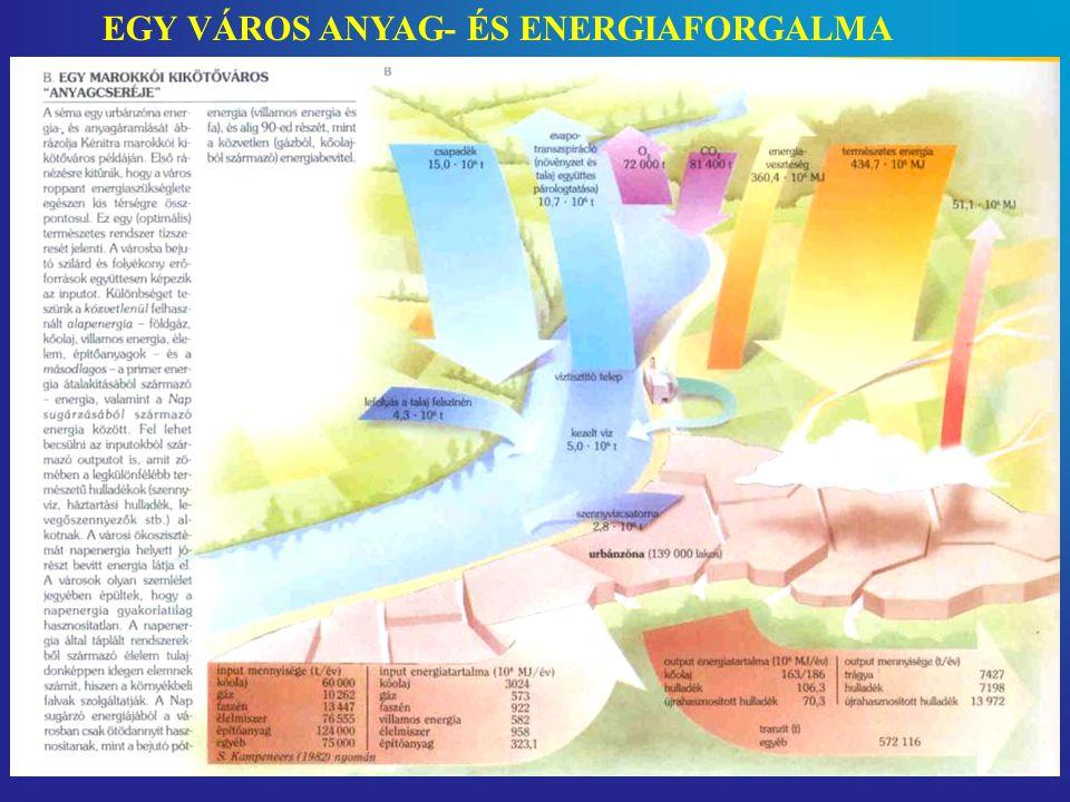 EGY VÁROS ANYAG- ÉS ENERGIAFORGALMA