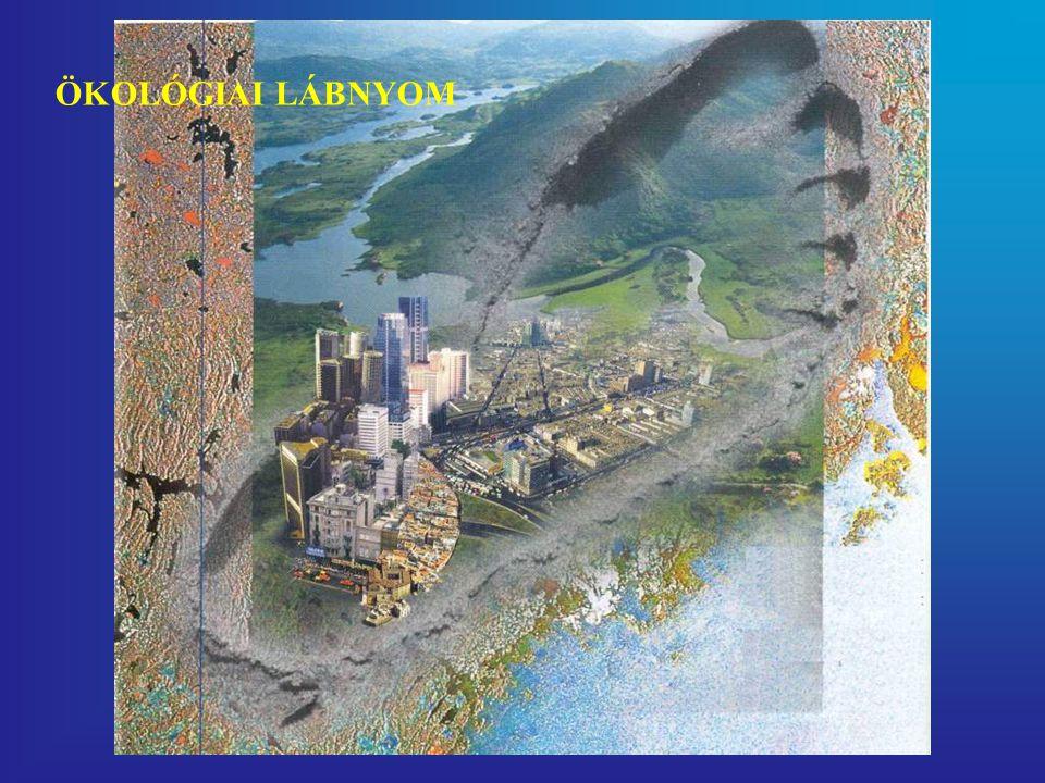 """Vízlábnyom (""""water footprint ) http://www.waterfootprint.org"""