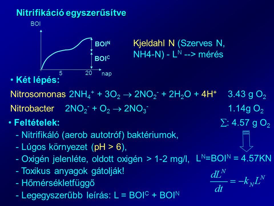 Nitrifikáció egyszerűsítve 5 20 nap BOI BOI C BOI N Kjeldahl N (Szerves N, NH4-N) - L N --> mérés Két lépés: Nitrosomonas 2NH 4 + + 3O 2  2NO 2 - + 2