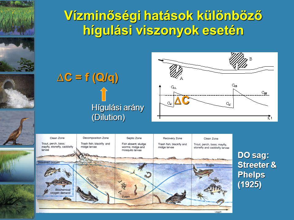 Vízminőségi hatások különböző hígulási viszonyok esetén  C = f (Q/q) Hígulási arány (Dilution) CCCC DO sag: Streeter & Phelps (1925)