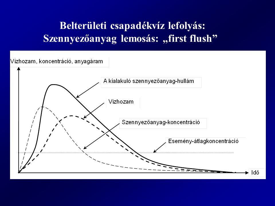 """Belterületi csapadékvíz lefolyás: Szennyezőanyag lemosás: """"first flush"""""""