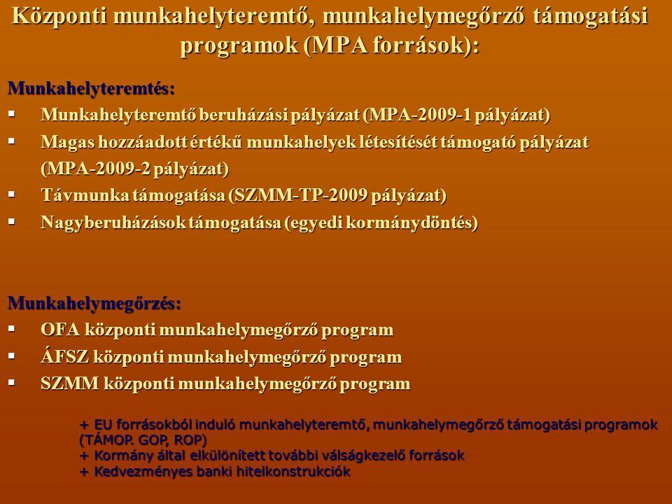 Központi munkahelyteremtő, munkahelymegőrző támogatási programok (MPA források): Munkahelyteremtés:  Munkahelyteremtő beruházási pályázat (MPA-2009-1 pályázat)  Magas hozzáadott értékű munkahelyek létesítését támogató pályázat (MPA-2009-2 pályázat)  Távmunka támogatása (SZMM-TP-2009 pályázat)  Nagyberuházások támogatása (egyedi kormánydöntés) Munkahelymegőrzés:  OFA központi munkahelymegőrző program  ÁFSZ központi munkahelymegőrző program  SZMM központi munkahelymegőrző program + EU forrásokból induló munkahelyteremtő, munkahelymegőrző támogatási programok (TÁMOP.