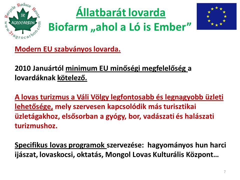 """Állatbarát lovarda Biofarm """"ahol a Ló is Ember"""" 7 Modern EU szabványos lovarda. 2010 Januártól minimum EU minőségi megfelelőség a lovardáknak kötelező"""