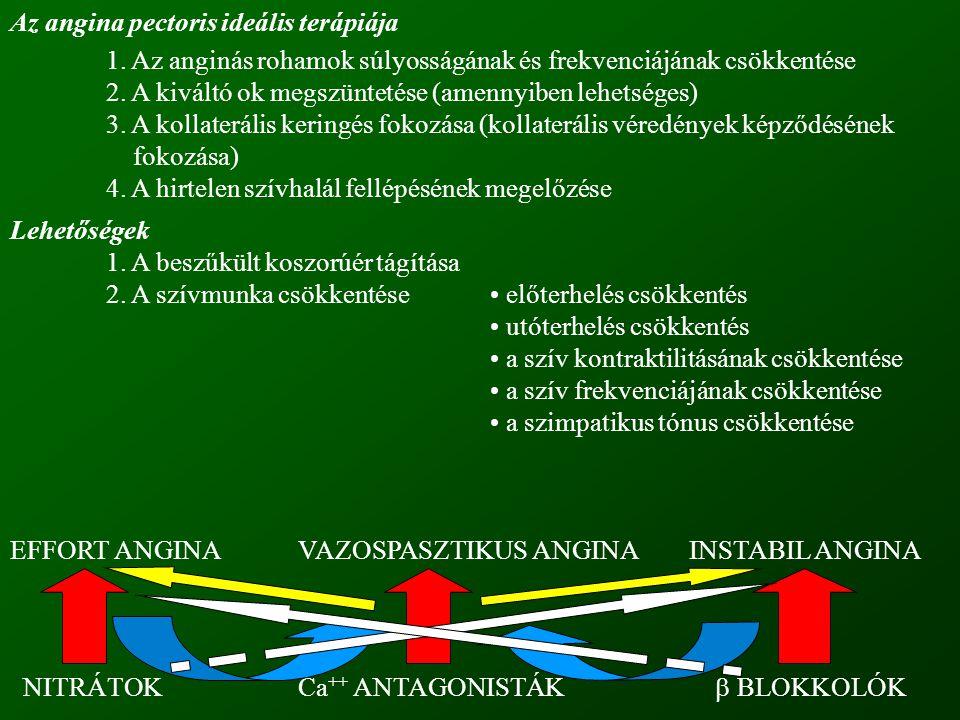Az angina pectoris ideális terápiája 1.