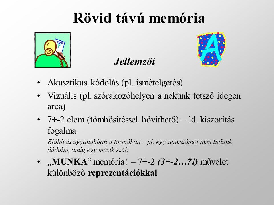 Rövid távú memória Akusztikus kódolás (pl. ismételgetés) Vizuális (pl. szórakozóhelyen a nekünk tetsző idegen arca) 7+-2 elem (tömbösítéssel bővíthető