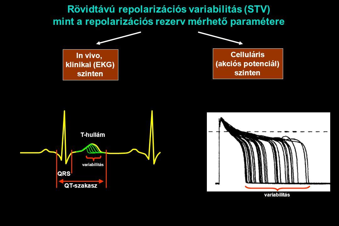 Rövidtávú repolarizációs variabilitás (STV) mint a repolarizációs rezerv mérhető paramétere Celluláris (akciós potenciál) szinten In vivo, klinikai (EKG) szinten T-hullám QT-szakasz QRS variabilitás