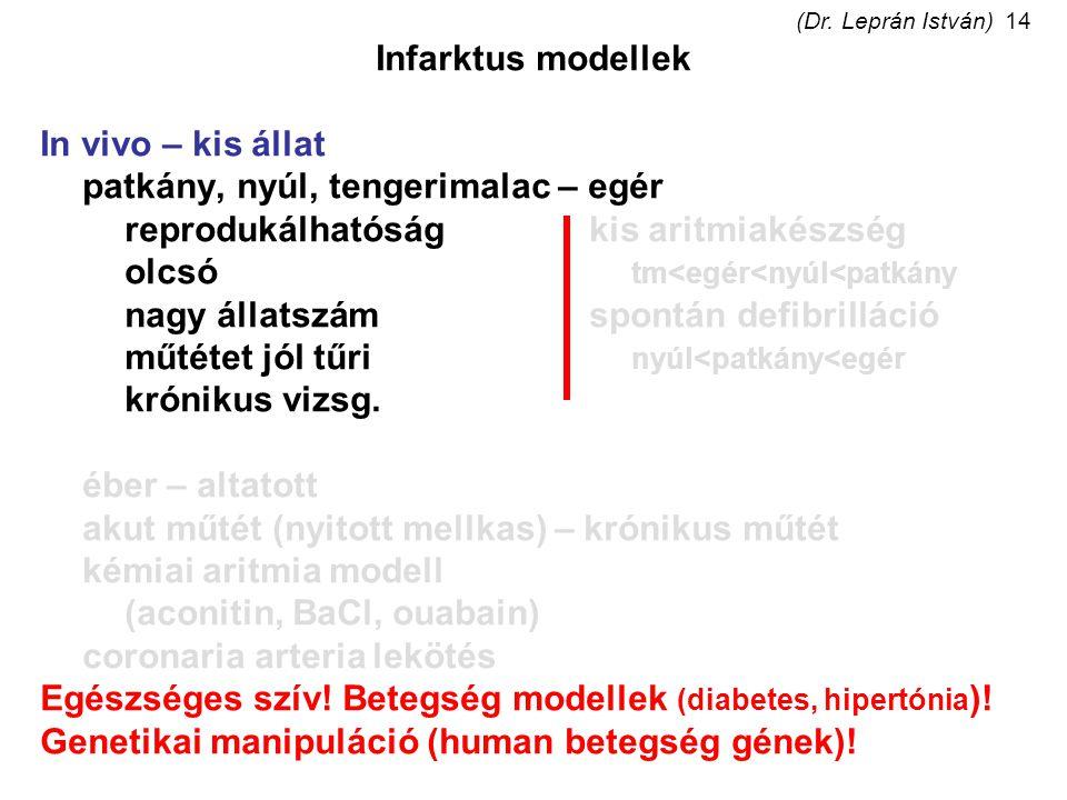(Dr. Leprán István)14 Infarktus modellek In vivo – kis állat patkány, nyúl, tengerimalac – egér reprodukálhatóságkis aritmiakészség olcsó tm<egér<nyúl