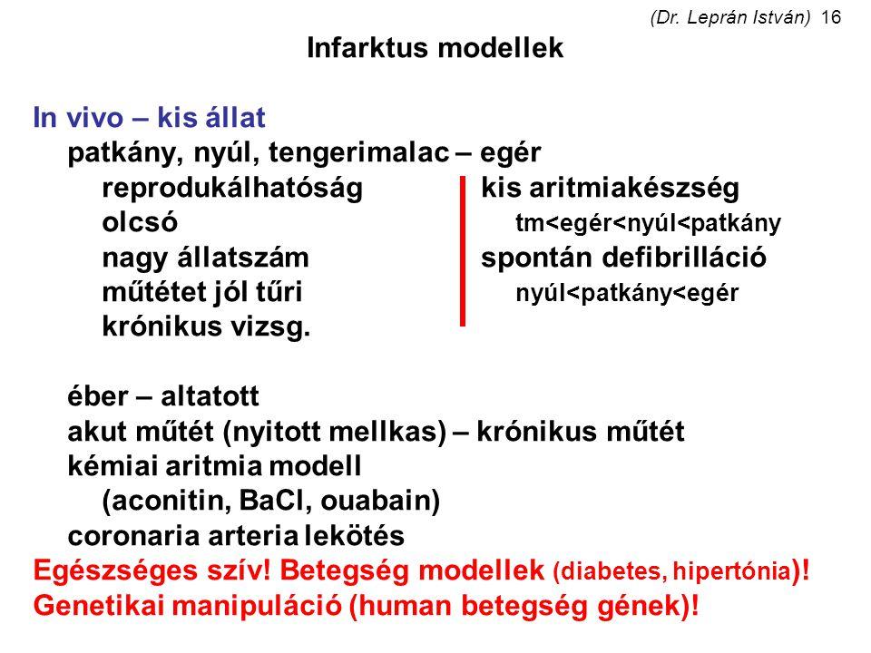 (Dr. Leprán István)16 Infarktus modellek In vivo – kis állat patkány, nyúl, tengerimalac – egér reprodukálhatóságkis aritmiakészség olcsó tm<egér<nyúl