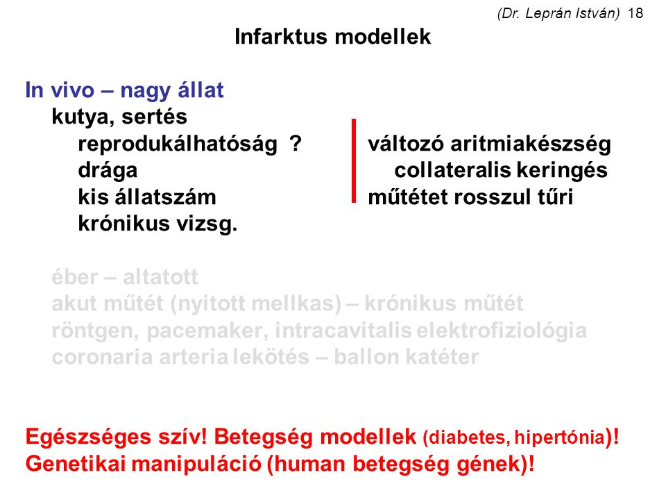 (Dr. Leprán István)18 Infarktus modellek In vivo – nagy állat kutya, sertés reprodukálhatóság?változó aritmiakészség drágacollateralis keringés kis ál
