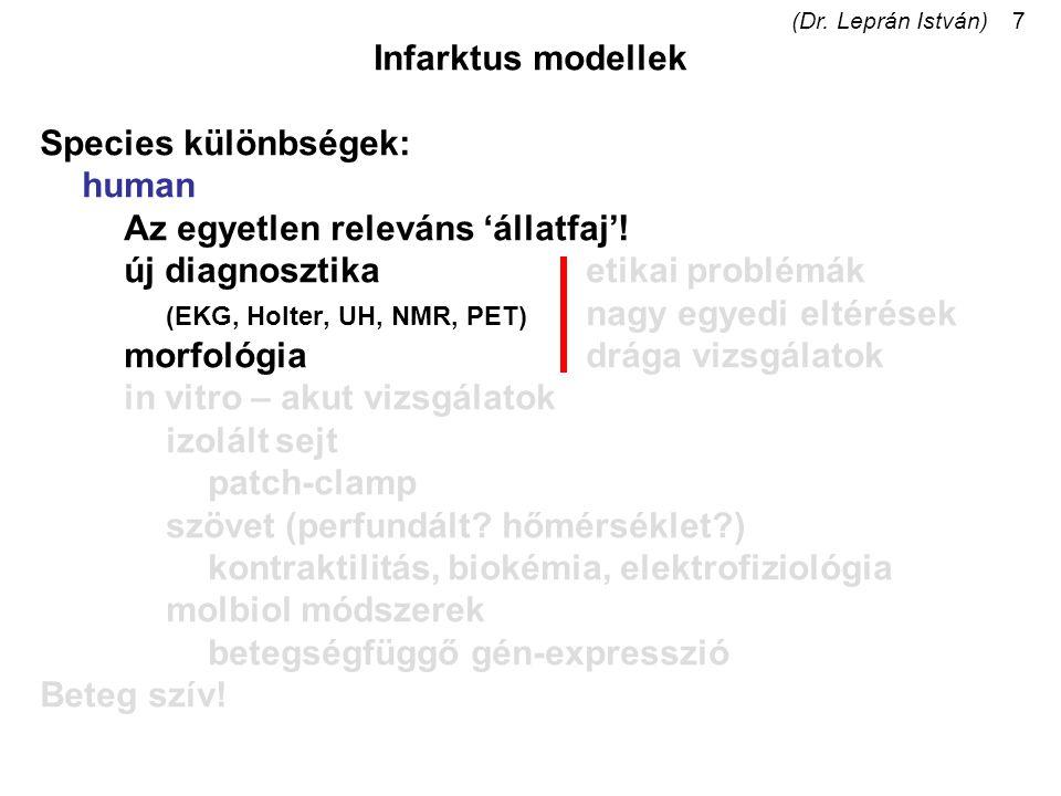 (Dr. Leprán István)7 Infarktus modellek Species különbségek: human Az egyetlen releváns 'állatfaj'! új diagnosztikaetikai problémák (EKG, Holter, UH,