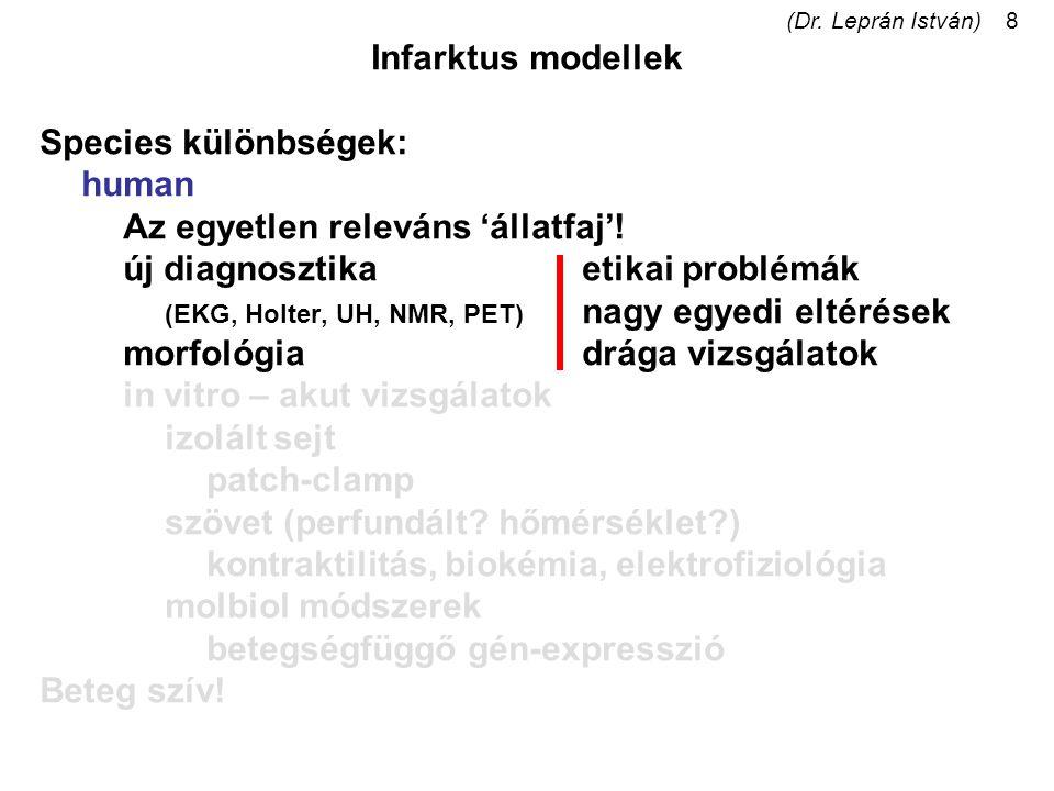 (Dr. Leprán István)8 Infarktus modellek Species különbségek: human Az egyetlen releváns 'állatfaj'! új diagnosztikaetikai problémák (EKG, Holter, UH,