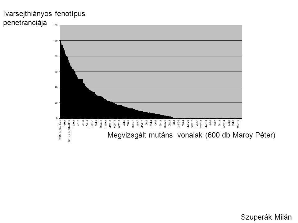Ivarsejthiányos fenotípus penetranciája Megvizsgált mutáns vonalak (600 db Maroy Péter) Szuperák Milán