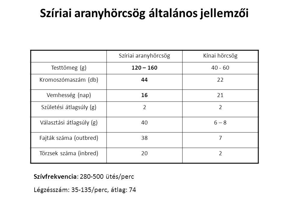 Szíriai aranyhörcsögKínai hörcsög Testtömeg (g)120 – 16040 - 60 Kromoszómaszám (db)4422 Vemhesség (nap)1621 Születési átlagsúly (g)22 Választási átlag