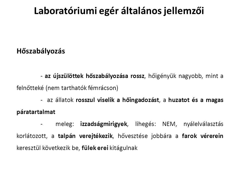 Laboratóriumi patkány felhasználási területei Toxikológia, Magatartás-kutatás (stressz), Magasvérnyomás, Diabetes insipidus, Retina degeneráció, Hydrocephalus, Microphthalmia, Süketség, Elhízás, Fognövekedési rendellenességek, Szívkárosodás, Magas koleszterin, Non Hodgkin's lymphoma, Paralysis, Gerincvelő sérülés, Stroke, Trachea transzplantáció.