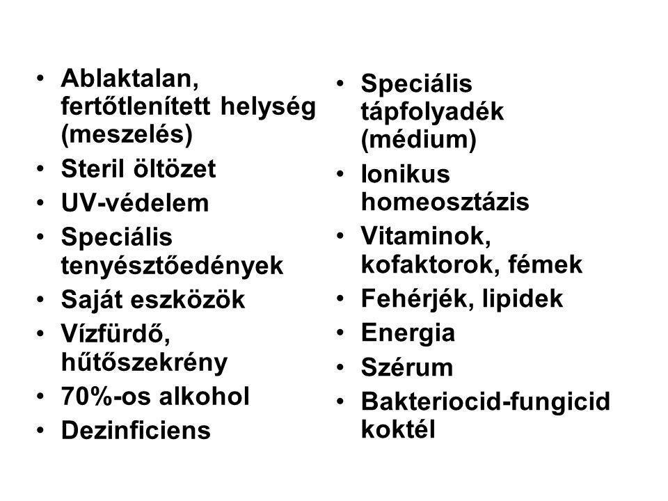 Speciális tápfolyadék (médium) Ionikus homeosztázis Vitaminok, kofaktorok, fémek Fehérjék, lipidek Energia Szérum Bakteriocid-fungicid koktél Ablaktal