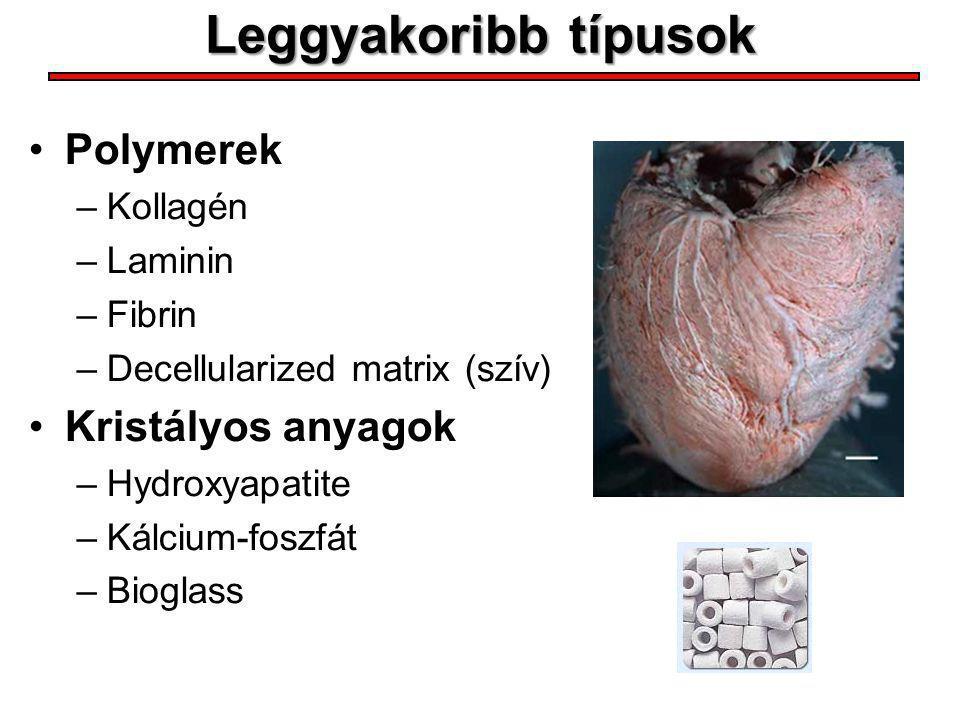 Leggyakoribb típusok Polymerek –Kollagén –Laminin –Fibrin –Decellularized matrix (szív) Kristályos anyagok –Hydroxyapatite –Kálcium-foszfát –Bioglass