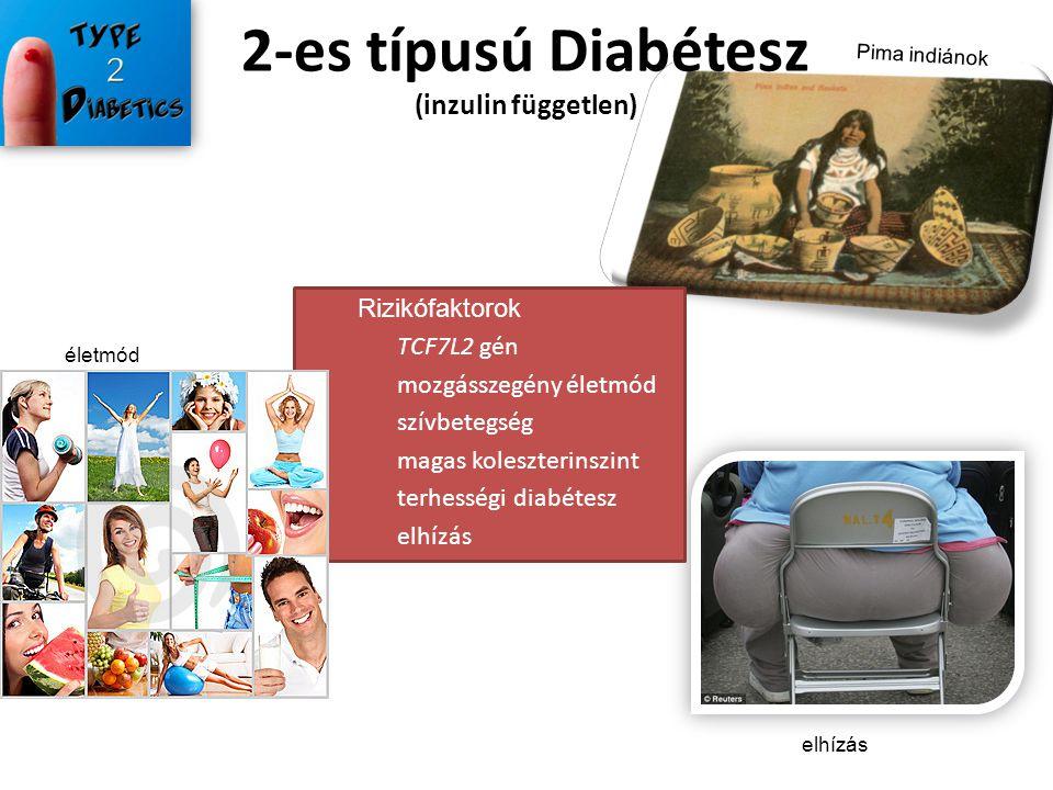2-es típusú Diabétesz (inzulin független) elhízás Rizikófaktorok TCF7L2 gén mozgásszegény életmód szívbetegség magas koleszterinszint terhességi diabé