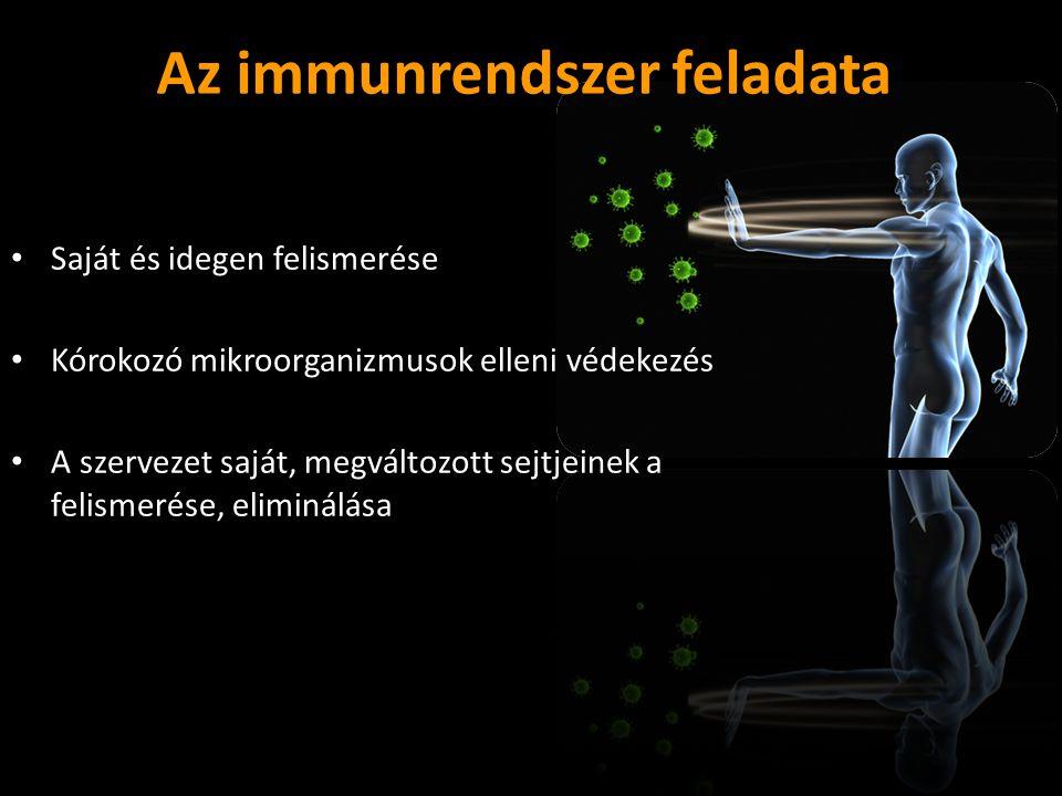 Az immunrendszer feladata Saját és idegen felismerése Kórokozó mikroorganizmusok elleni védekezés A szervezet saját, megváltozott sejtjeinek a felisme
