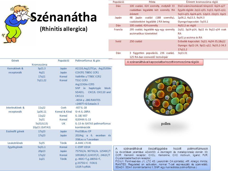 Szénanátha (Rhinitis allergica) Gének Kromoszóma PopulációPolimorfizmus & gén Kemokinek & receptoraik 3p21.3 4q21 17q11 7q11.22 Japán Koreai A111G,Arg