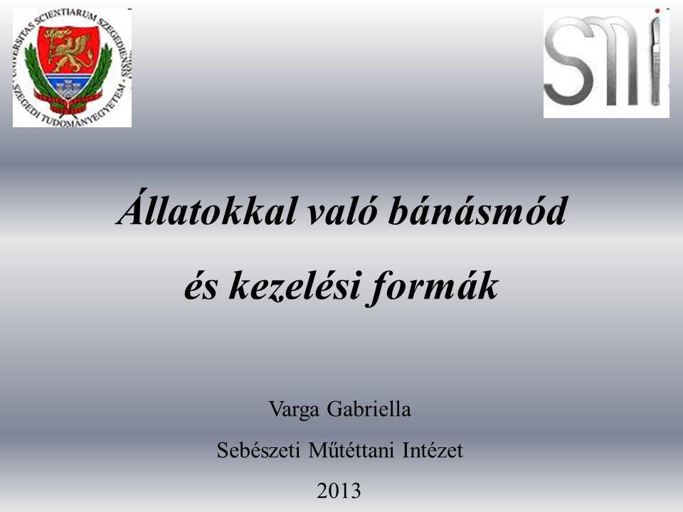 Állatokkal való bánásmód és kezelési formák Varga Gabriella Sebészeti Műtéttani Intézet 2013