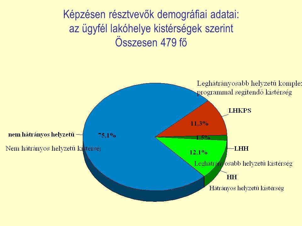 Képzésen résztvevők demográfiai adatai: az ügyfél lakóhelye kistérségek szerint Összesen 479 fő
