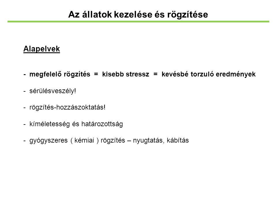 Az állatok kezelése és rögzítése Alapelvek - megfelelő rögzítés = kisebb stressz = kevésbé torzuló eredmények - sérülésveszély! - rögzítés-hozzászokta