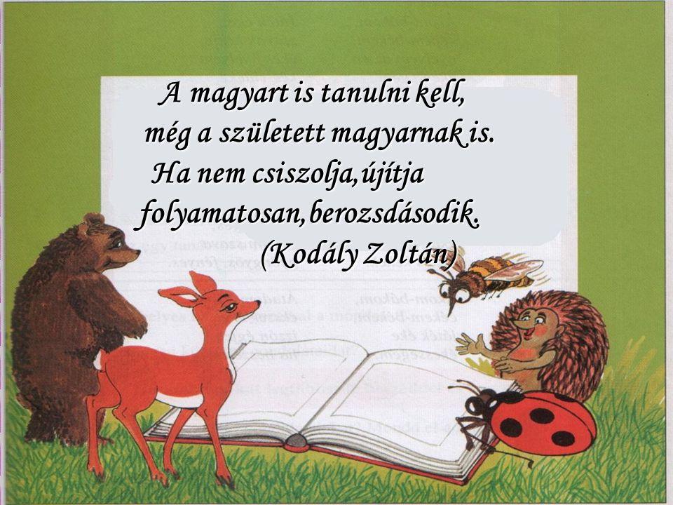 A magyart is tanulni kell, még a született magyarnak is.