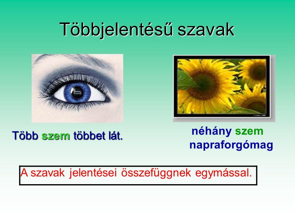 Többjelentésű szavak Több szem többet lát.Több szem többet lát.