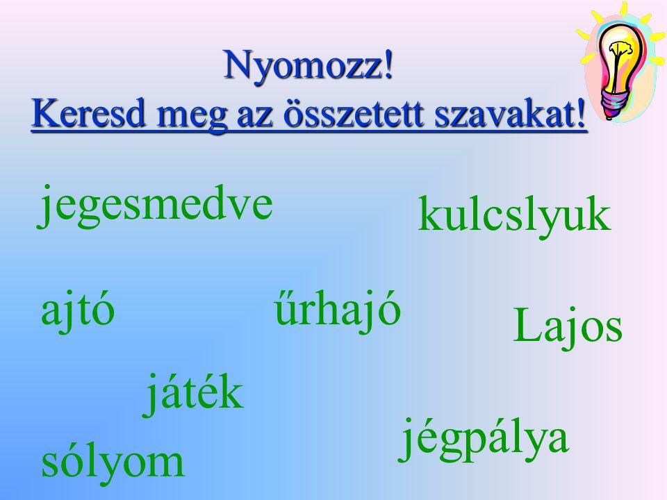 Felhasznált irodalom Baráth Hajnalka – Szkabela Rózsa : Betűcsalogató Szőcs Tiborné – Kováč Sylvia : Írj helyesen.