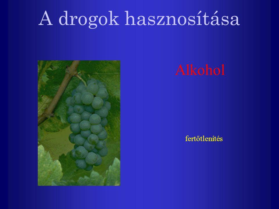 A drogok hasznosítása Alkohol fertőtlenítés