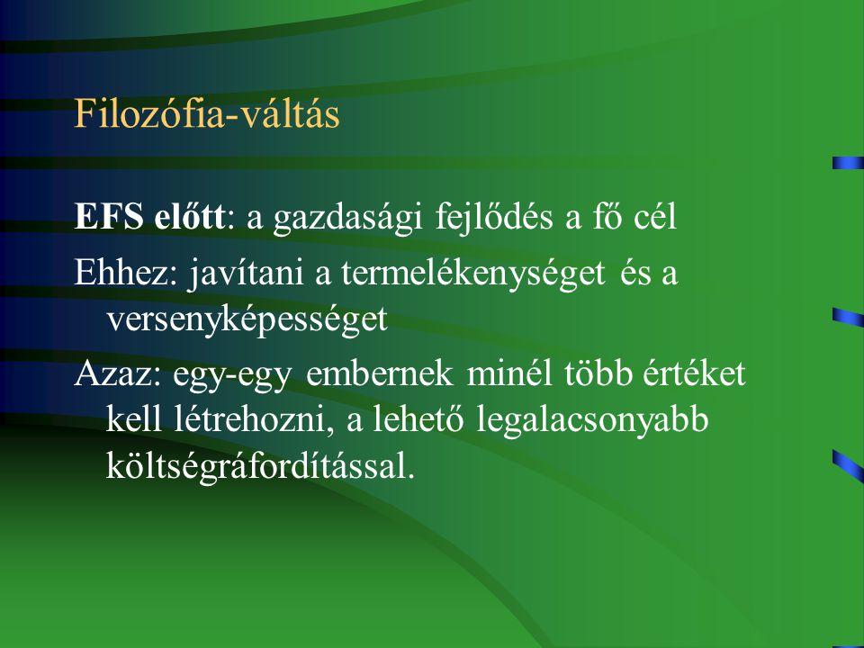 IV.Wim Kok jelentés, 2003.