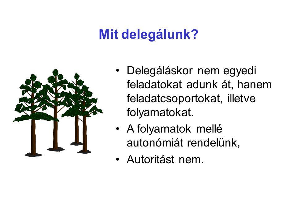 Mit delegálunk? Delegáláskor nem egyedi feladatokat adunk át, hanem feladatcsoportokat, illetve folyamatokat. A folyamatok mellé autonómiát rendelünk,