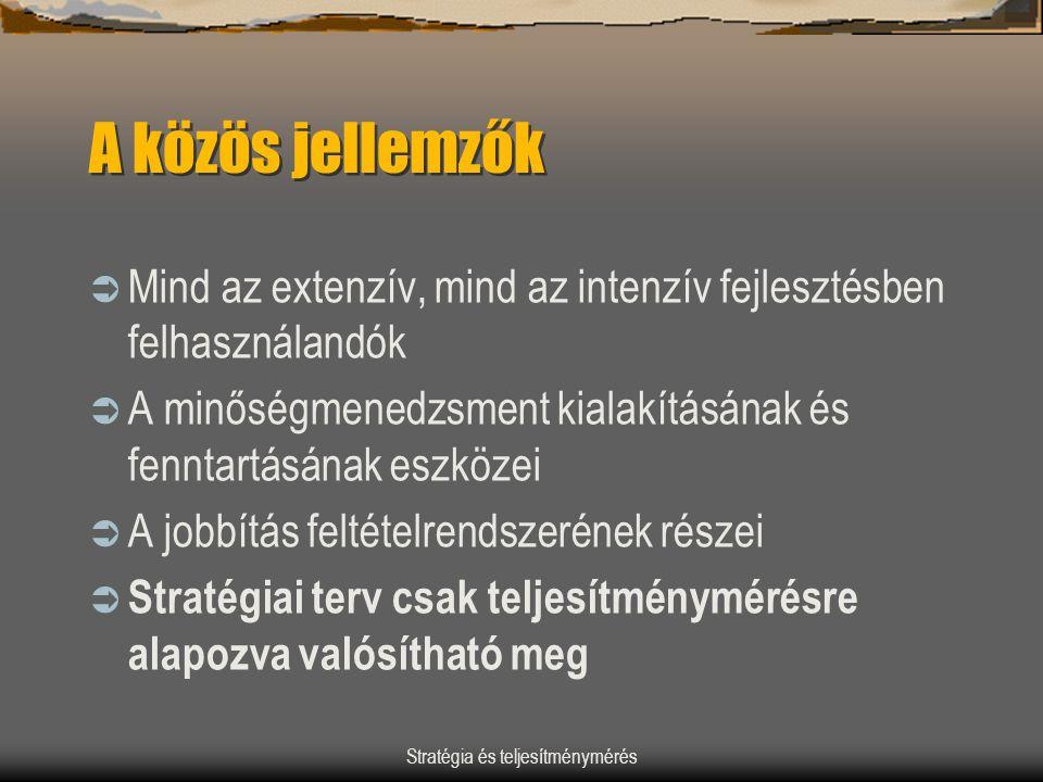Stratégia és teljesítménymérés A közös jellemzők  Mind az extenzív, mind az intenzív fejlesztésben felhasználandók  A minőségmenedzsment kialakításá