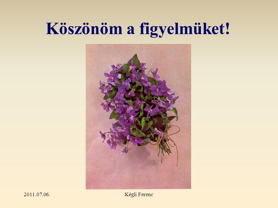 2011.07.06.Kégli Ferenc Köszönöm a figyelmüket!