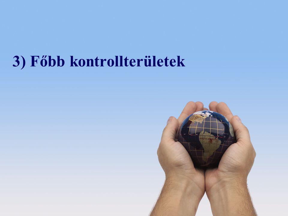 © 2008 Deloitte Zrt. 3) Főbb kontrollterületek