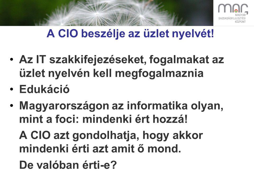 A CIO beszélje az üzlet nyelvét.