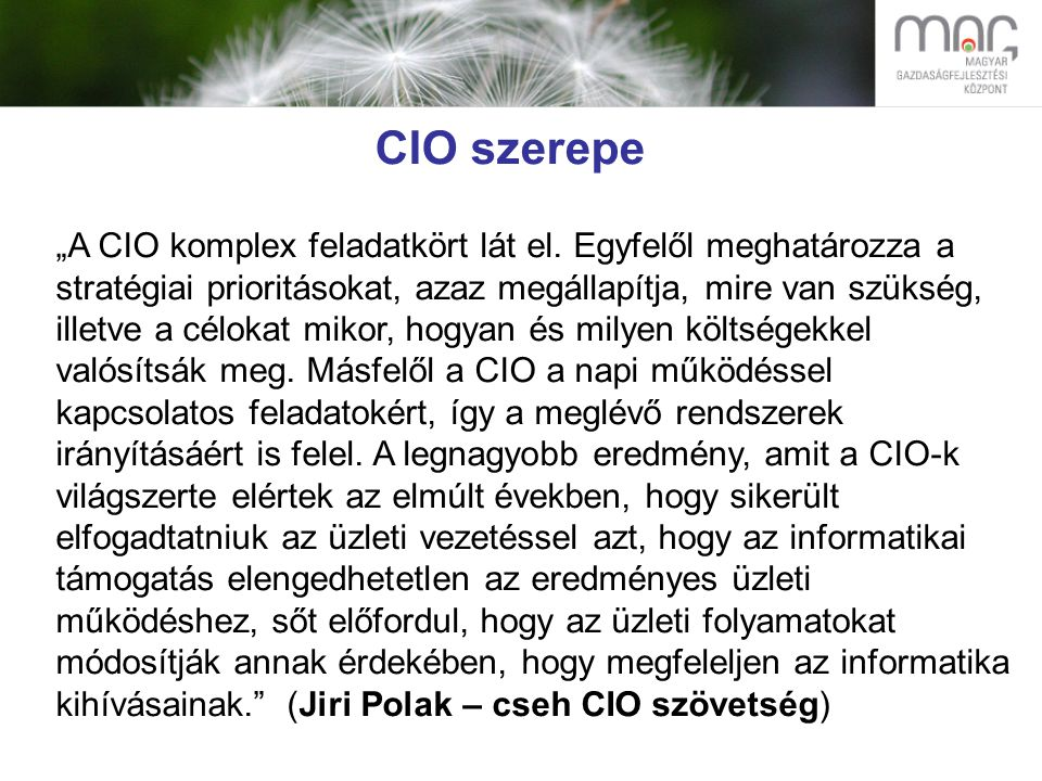 """CIO szerepe """"A CIO komplex feladatkört lát el."""