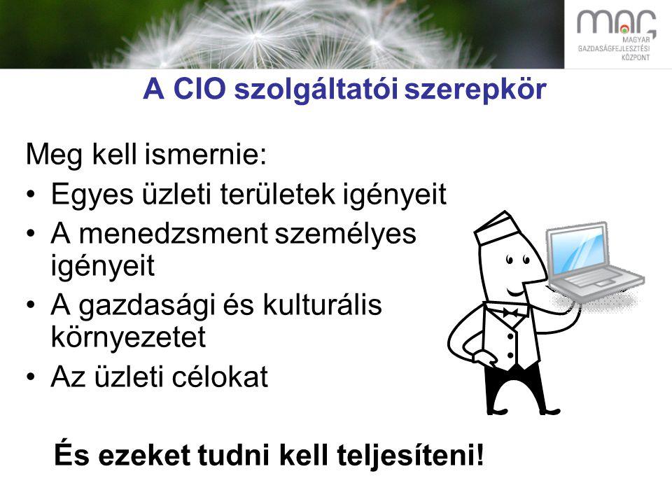 A CIO szolgáltatói szerepkör Meg kell ismernie: Egyes üzleti területek igényeit A menedzsment személyes igényeit A gazdasági és kulturális környezetet Az üzleti célokat És ezeket tudni kell teljesíteni!