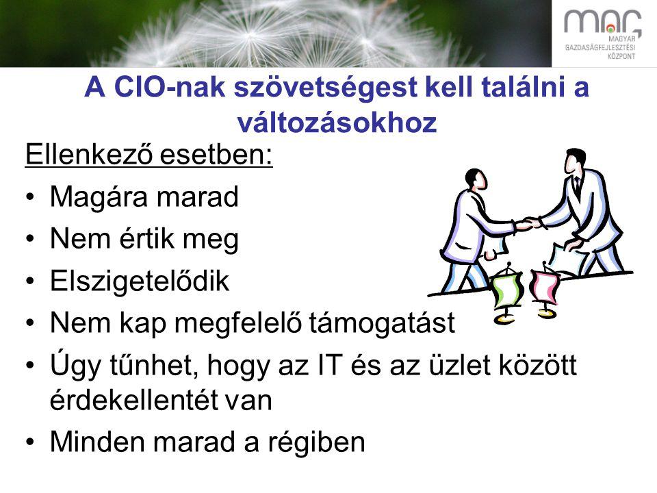 A CIO-nak szövetségest kell találni a változásokhoz Ellenkező esetben: Magára marad Nem értik meg Elszigetelődik Nem kap megfelelő támogatást Úgy tűnhet, hogy az IT és az üzlet között érdekellentét van Minden marad a régiben