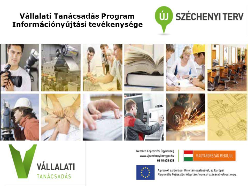 Vállalati Tanácsadás Program Információnyújtási tevékenysége