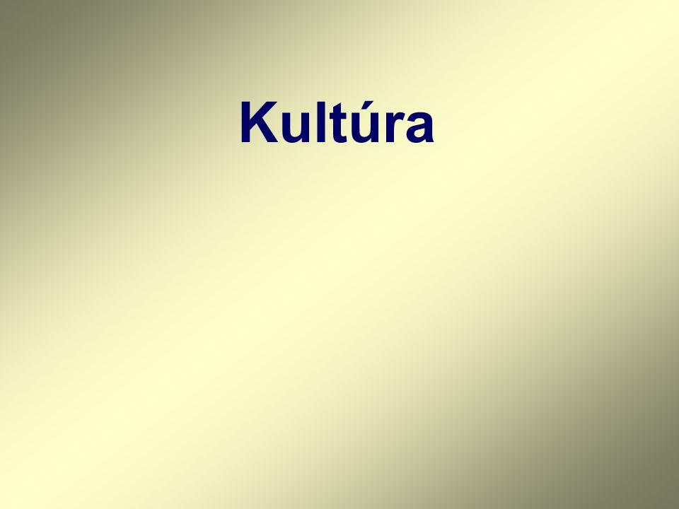 A KULTÚRA MEGHATÁROZÁSA 1.A kultúra C.