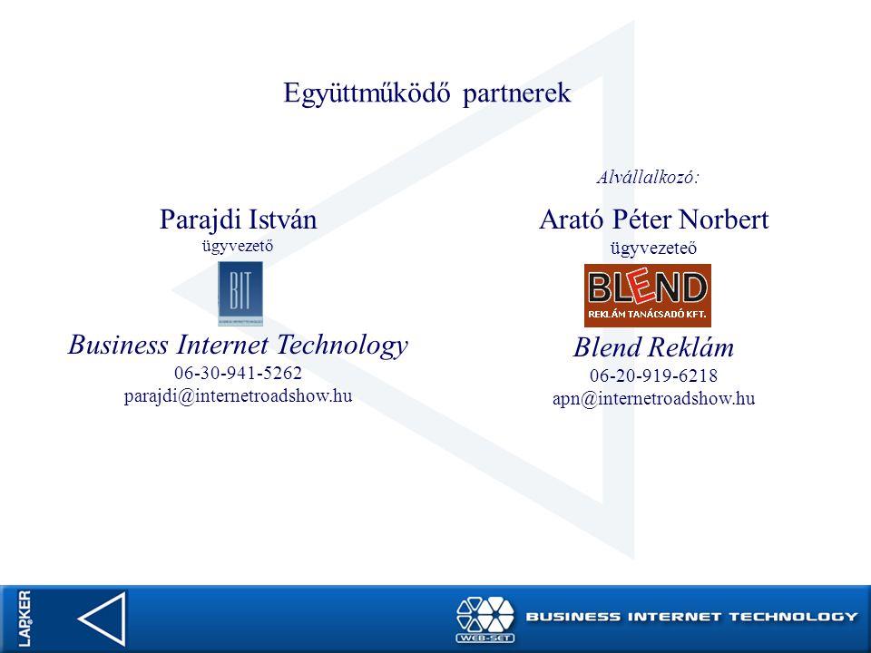 Promóciós eszközök a Lapker honlapjának támogatására Bevezető: A Lapker Rt.