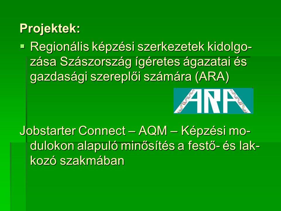 Projektek:  Regionális képzési szerkezetek kidolgo- zása Szászország ígéretes ágazatai és gazdasági szereplői számára (ARA) Jobstarter Connect – AQM – Képzési mo- dulokon alapuló minősítés a festő- és lak- kozó szakmában