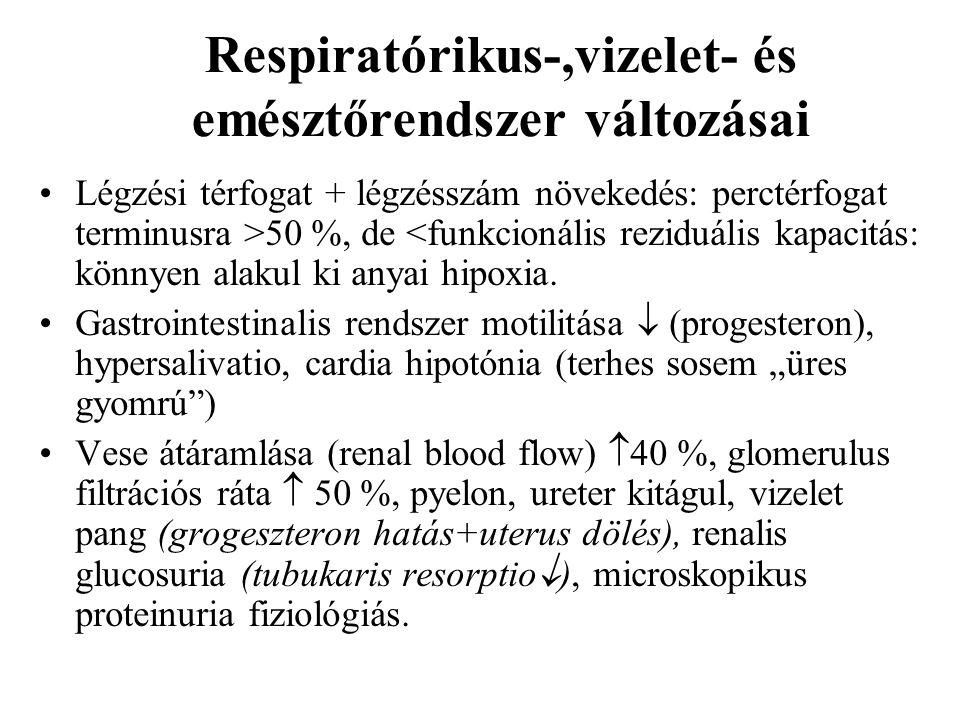 Respiratórikus-,vizelet- és emésztőrendszer változásai Légzési térfogat + légzésszám növekedés: perctérfogat terminusra >50 %, de <funkcionális rezidu